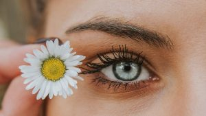 Gänseblümchen Auge